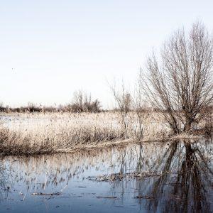 Foto aan de muur Landscape 2 | Brandwijk Fotografie
